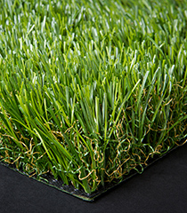 Synthetic Turf: ecoTurf