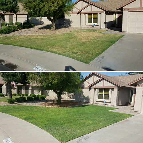 irrigation-audit-before-after
