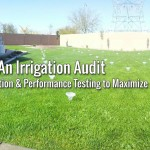 Cost Saving Irrigation Audit